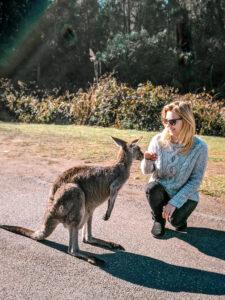 girl with kangaroo