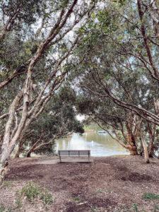 Bicentenial Park bench